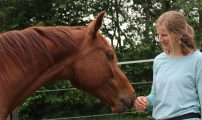 Pferde als Spiegel der Seele