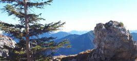 Meditative Wandertage im Blauen Land
