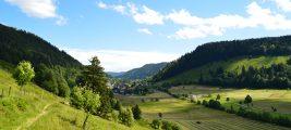 Fastenwandern im Hochschwarzwald vom 2.10.-9.10.21